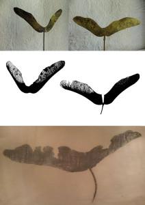 Lönnvingar